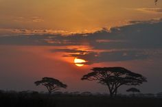Sunset in Kenya (Photo: Peaks Foundation)