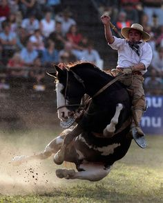 """A gaucho rides an unbroken horse during the annual celebration of Criolla Week in Montevideo, March 25, 2013. Throughout Easter Week """"gauchos"""", the Latin American equivalent of the North American """"cowboy"""", from all over Uruguay and neighboring Argentina and Brazil visit Montevideo to participate in Criolla Week to win the award of best rider. The competition is held March 24 - March 30. REUTERS/Andres Stapff"""