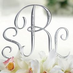 Silver Monogram Wedding Cake Topper Letters (Lillian Rose MG555)   Buy at Wedding Favors Unlimited (http://www.weddingfavorsunlimited.com/silver_monogram_letter_cake_pick.html).