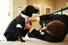 Totally putting Laker in a tux when I get married!! lol