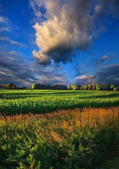 "Old Dirt Road in Country | Clouds Skirt the Southern Sky"" Horizons by Phil Koch. Milwaukee ..."