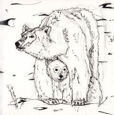 Sleeping Polar Bear Drawing