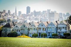 The Painted Ladies  Fine Art Photography by PatrickRabbatPhotos, $25.00  Great shot!