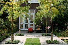 Achtertuin - Ontwerp - Inspiratie - Strakke - Tuin | Garden ✭ Ontwerp | Design Ruud Vermeer Outdoor Living, Outdoor Decor, Green Garden, Garden Spaces, Pavement, Garden Inspiration, Garden Design, Pergola, Sidewalk