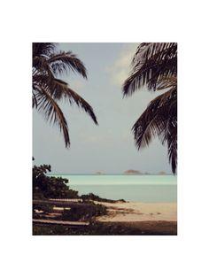 paradise via h&m