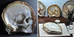 Delicate Skulls Carved Into Mother Of Pearl Shells By Gregory Halili   Bored Panda