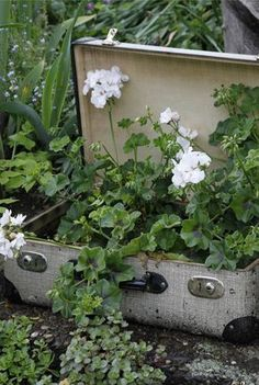 12 decoration ideas for the garden - Garten Potted Plants Patio, Outdoor Plants, Garden Planters, Container Flowers, Container Plants, Container Gardening, Little Gardens, Garden Junk, Plantar