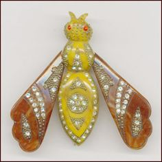 Bakelite Moth Pin. Learn about your collectibles, antiques, valuables, and vintage items from licensed appraisers, auctioneers, and experts at BlueVault. Visit:  http://www.BlueVaultSecure.com/roadshow-events.php