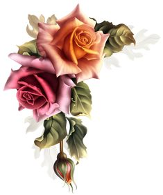- Autumn Roses Exotic Flowers, Floral Flowers, Flower – Autumn Roses Png transparent png image for -