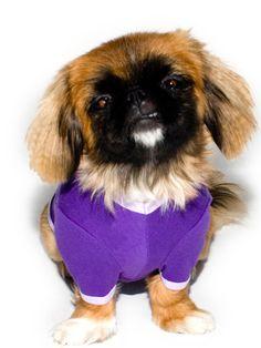 Baby Rib Dog T by #AmericanApparel
