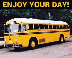 School Buses, School District, School Fashion, Crown, Cat, Style, Trucks, Stylus, Cat Breeds
