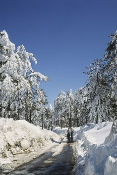 Troodos Mountains Winter Holidays, Cyprus