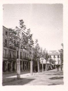 Alcala001.jpg (361×481)