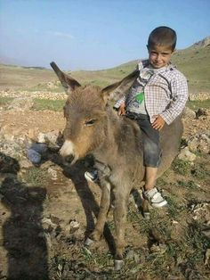A boy and his donkey Kids Around The World, People Of The World, Turkish People, Animals For Kids, My Animal, Beautiful Children, First World, Cute Kids, Little Ones