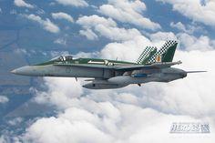 Royal Australian Air Force F/A-18 Hornet at Australian International Air Show 2013.