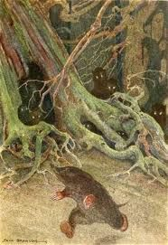 Paul Bransom wind in the willows - Google Search