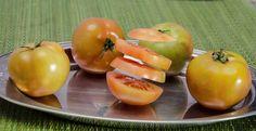 levitação de tomates