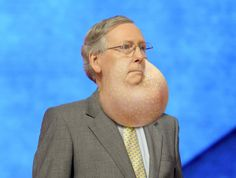 Mitch McConnell Inflates Throat Pouch In Show Of Dominance Over Fellow Congressional Males
