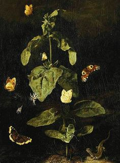 "stilllifequickheart: "" Otto Marseus van Schrieck Forest Floor Still Life with Butterflies and Lizards century "" Pierrot Costume, Map Pictures, Old Paintings, Flower Paintings, 17th Century Art, Art Corner, Forest Floor, Dutch Painters, Vanitas"