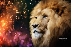 Male lion digital painting with sparkling background by Tracey Everington of Tracey Lee Art Designs. Prints and merchandise available. Sparkles Background, Background S, Male Lion, Bag Sale, Art Blog, Art Designs, Enchanted, Fine Art America, Digital Art