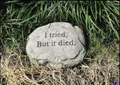 Picture Only: Funny garden stone!!!  I can't tell you where to get one - let us know DIY ideas for this.