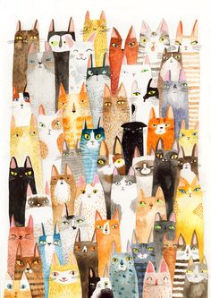 Cat print  lots of colorful cats  A4 print by SurfingSloth on Etsy