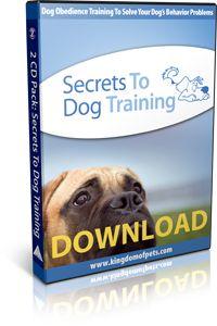 FREE Secrets to Dog Training   http://pinterests.biz/dog-training