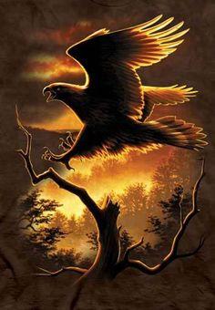 T-Shirt - Golden Eagle
