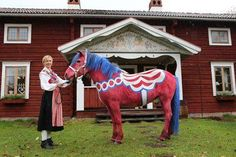 This was taken at the 2012 Stockholm International Horse Show. The theme was Sweden, so they painted a live horse in the colors of a traditional Dala horse!