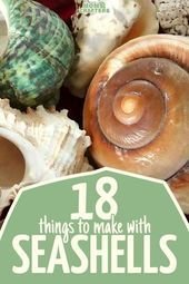 18 of the best Seashell Crafts * Moms and Crafters Arts And Crafts For Adults, Crafts For Teens To Make, Easy Arts And Crafts, Arts And Crafts House, Arts And Crafts Projects, Easy Diy Crafts, Creative Crafts, Crafts To Sell, Kids Crafts