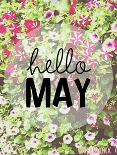 New Month New Goals Make it happen ! Spring Months, Months In A Year, Spring Time, 12 Months, Hello Spring Wallpaper, New Month Wishes, Welcome May, Flower Girl Photos, Flower Girls