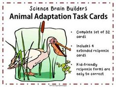"This set of 32 ""Animal Adaptations Task Cards"" gets kids thinking about how animals are adapted for their environment. Several cards match key concepts and vocabulary that are part of many states' curriculum standards."