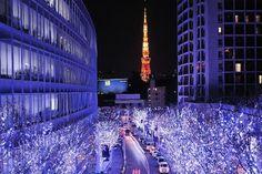 Airbnbで見つけた素敵な宿: ゲストハウス★新宿駅から4分、2~4人にぴったり2都会の隠れ家★プライベートルームです。 - 借りられる一軒家 - Nakano-ku