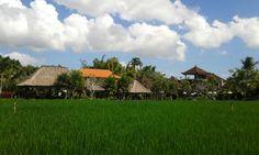 Bebek tepi sawah resto, Ubud. -August 2013