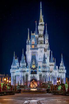 Cinderella Castle Christmas Lights at Walt Disney World Disney World Usa, Disney Parks, Disney World Castle, Orlando Disney, Orlando Florida, Disney Love, Disney Magic, Disney Ideas, Disney Disney