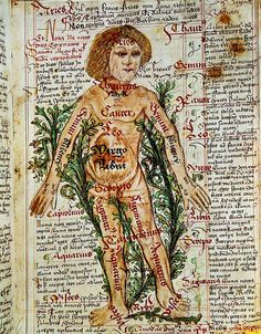 """Tractatus de pestilentia"". Influence of the Stars on Illnesses of the Human Body. #ZodiacMan"