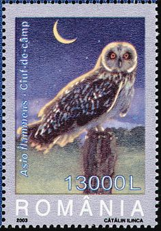 stamp issues stamps pinterest owl stamps and store