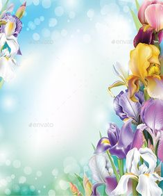 Buy Background with Iris Flowers by on GraphicRiver. Background with Iris flowers. Pic Edit Background, Frame Background, Background For Photography, Background Patterns, Flowers Gif, Vector Flowers, Iris Flowers, Flower Backgrounds, Flower Wallpaper