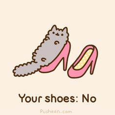 Pusheen - Cats Don't Belong in Shoes