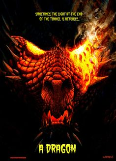 Sometimes, the light at the end of the tunnel is actually a DRAGON  #Dragon