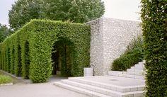 een huis van carpinus