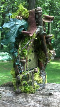 moss and sticks around door