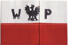I'm so proud to be Polish. #EveTorres #BelieversBoard