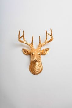 The mini Alfred resin deer head. Small white faux deer head wall sculpture with gold antlers. Great for any room. Fast shipping!