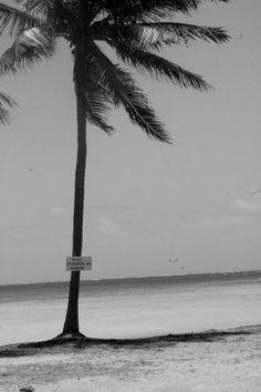 """Photographie noir et blanc """"plage interdite au nudisme"""" martinique, mai 2015 : Photos par le-petit-bazar-des-trinomettes-en-delire"""
