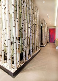 birch-wall-dividers - Home Decorating Trends - Homedit
