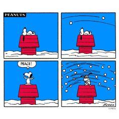 Peanuts - Poor Snoopy!