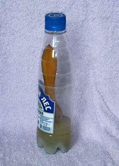 short term saving wet paintbrush in bottle cut in half then put back together
