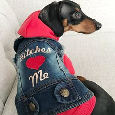 This denim jacket is sure to make your dog look and feel his best. Bitches Love Me is written in rose gold, as well as pins fastened to the collar finish the look of this jacket. These denim jackets run small in size. Please measure your dog before ordering and refer to this size