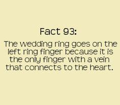 <3 thats amazing